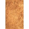 L.A. Rugs Silky Shag Gold Indoor Area Rug