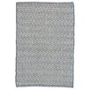 Dash and Albert Rugs Crystal Blue/White Indoor/Outdoor Area Rug