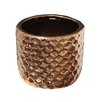 Ginnifer Electroplate Ceramic Pot Planter - Size: 4.5 inch High x 5 inch Wide x 5 inch Deep - Bungalow Rose Planters