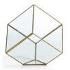 Glass Terrarium - DanyaB Planters