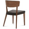 Domitalia Diana Side Chair (Set of 2)