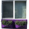 Rotoluxe Ballavaz Novelty Window Box