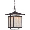 Minka Lavery Hillsdale 1 Light Outdoor Hanging Lantern