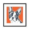 Naked Decor Boston Terrier Graphic Art