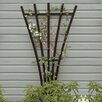Eggleston Highwood Traditional Wood Fan Trellis - Finish: Black - Charlton Home Trellises