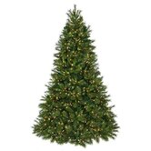 Regency International Christmas Trees