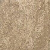 Shaw Floors Floor & Wall Tile
