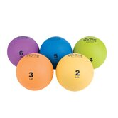 Eco Wise Fitness Weighted Exercise Balls
