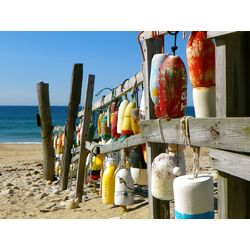 Holiday by the Sea: Coastal Finds