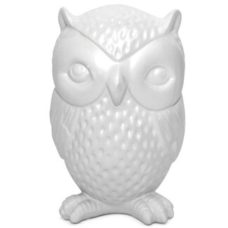 <strong>Kikkerland</strong> Owl Coin Bank
