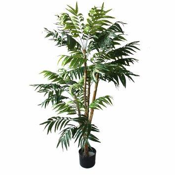 Tropical Palm Tree In Pot Wayfair