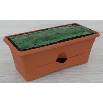 Rectangular planter box wayfair for Wayfair garden box