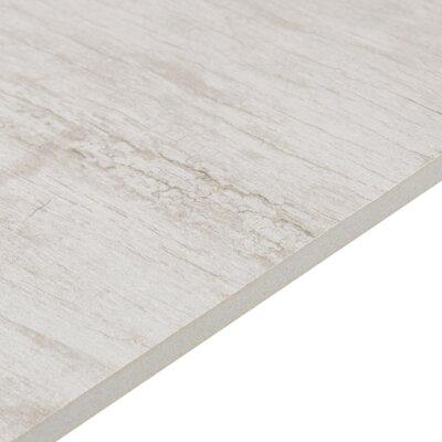"""Season Wood 24"""" x 48"""" Porcelain Wood Look Tile in Snow Pine"""