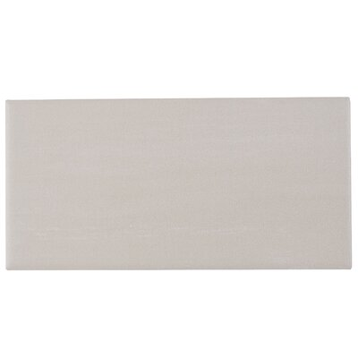 "Clearview 4"" x 8"" Ceramic Field Tile in Off White"