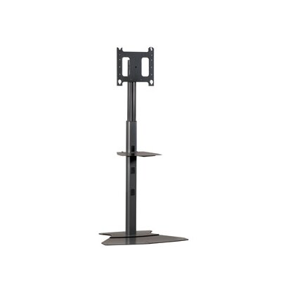 "Adjustable Medium Tilt Floor Stand Mount for 30"" - 50"" Plasma/LCD Finish: Black"