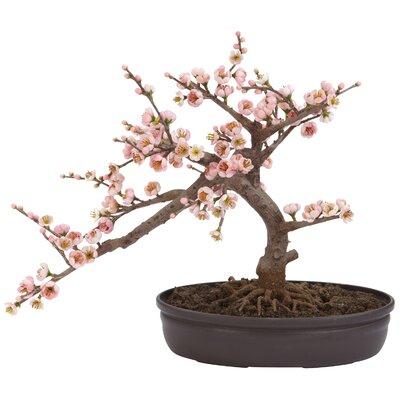 Nearly Natural Blossom Bonsai Tree in Pot