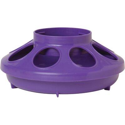 Chicken Feeder Base - 1 Quart Color: Purple