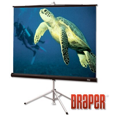 "Diplomat/R with Carpeted Case Matt White Portable Projection Screen Size / Format: 109"" diagonal / 16:10"