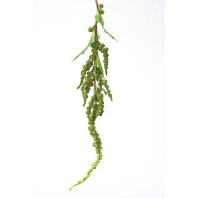 DIY Foliage Artificial Hanging Amaranthus Spray (Set of 12) Flower Color: Dark Green