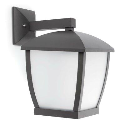 Faro Wilma 1 Light Outdoor Sconce