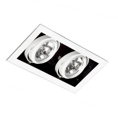 Faro Gingko 2 Light Ceiling Spotlight