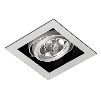 Faro Gingko One Light Steel Downlight