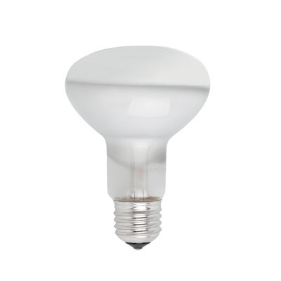 Faro 52W E27/Medium Compact Fluorescent (CFL) Light Bulb