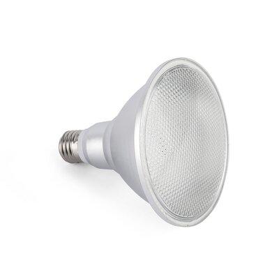Faro 8W LED Light Bulb