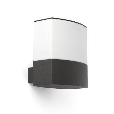 Faro Datna 1 Light Semi-Flush Wall Light