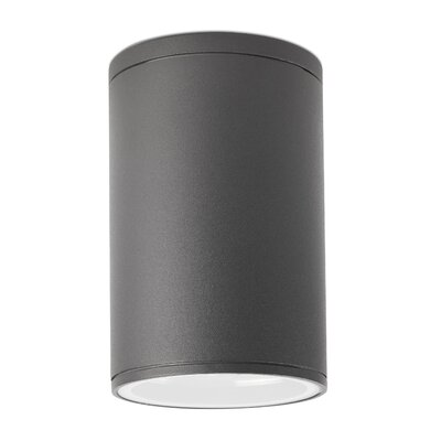 Faro Tasa-2 1 Light Ceiling Spotlight