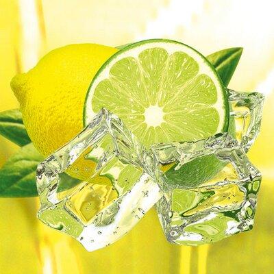 Eurographics Decoglass by Fresh Lemon and Lime Graphic Art