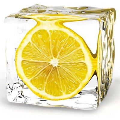 Eurographics Lemon in Ice Photographic Print on Glass