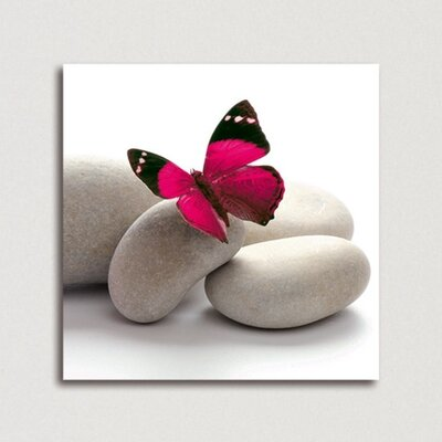 Eurographics Butterfly by EG Design Team Photographic Print