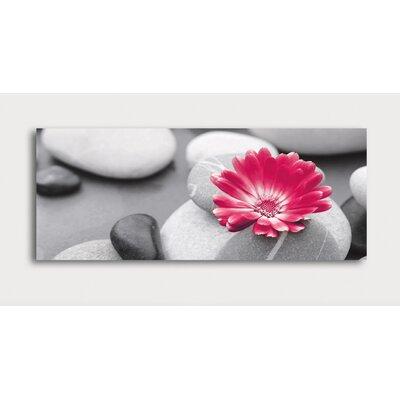 Eurographics Marigold on Stone by EG Design Team Photographic Print on Glass