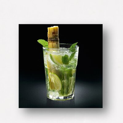 Eurographics Yummy Delicious Mojito by EG Design Team Photographic Print