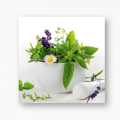 Eurographics Fine Herbs ll by EG Design Team Photographic Print on Glass