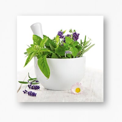 Eurographics Fine Herbs l by EG Design Team Photographic Print on Glass