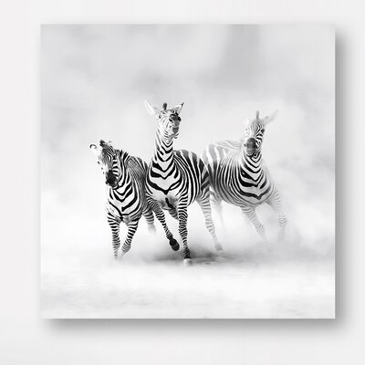 Eurographics Zebras by Luis Duran Photographic Print