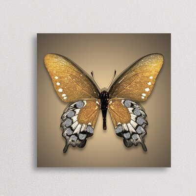 Eurographics Gold Butterfly Wall Art on Canvas
