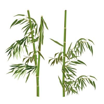 Eurographics Bamboo Everywhere Wall Tattoo