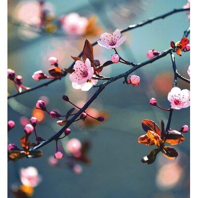 Eurographics Beautiful Spring Day Graphic Art Wall Print