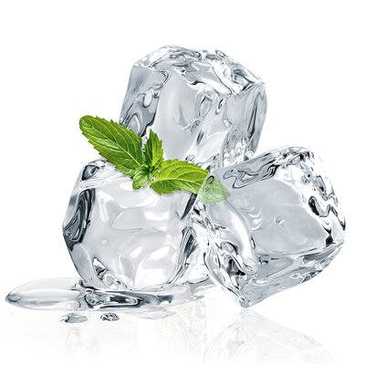 Eurographics Three Mint Ice Photographic Print Glass Wall Art