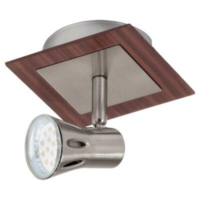 Eglo Algonda 1 Light Spotlight