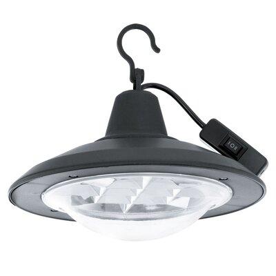 Eglo 12 Light Outdoor Pendant