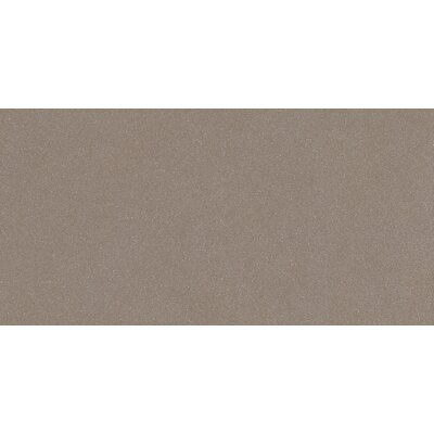 "Direction 12"" x 24"" Porcelain Tile in Polished Gray"