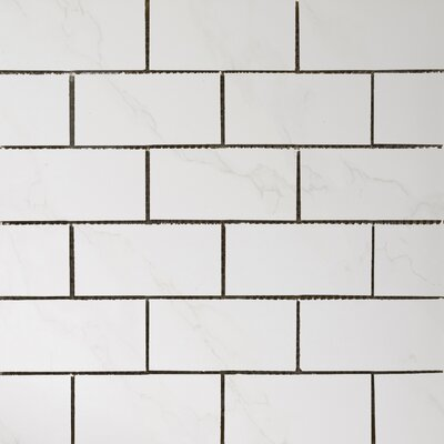 "Paladino 2"" x 4/12"" x 12"" Porcelain Mosaic Tile in Albanella Matte"