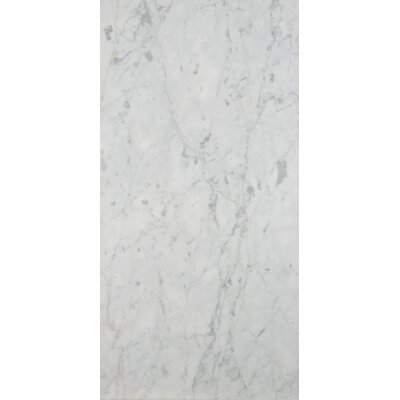 "Marble 12"" x 24"" Field Tile in Bianco Gioia Honed"