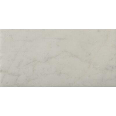 "Marble 16"" x 32"" Field Tile in Bianco Gioia"