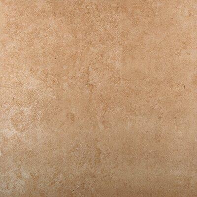 """Baja 18"""" x 18"""" Ceramic Field Tile in Sonora"""