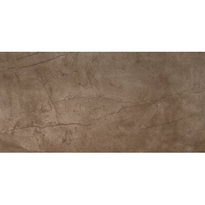 "Citadel 24"" x 35"" Porcelain Field Tile in Brown"